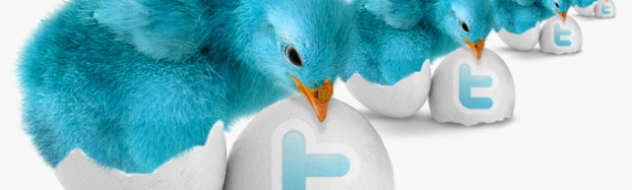 More twitter followers? Yes, but what for?