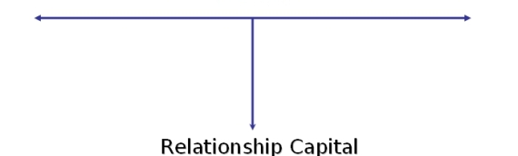 Social Capital and Relationship Capital